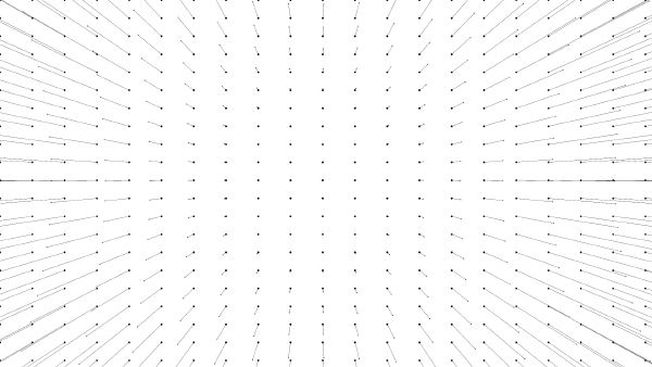 An image of a lens distortion vector field
